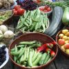 One day's harvest at Garden Cottage